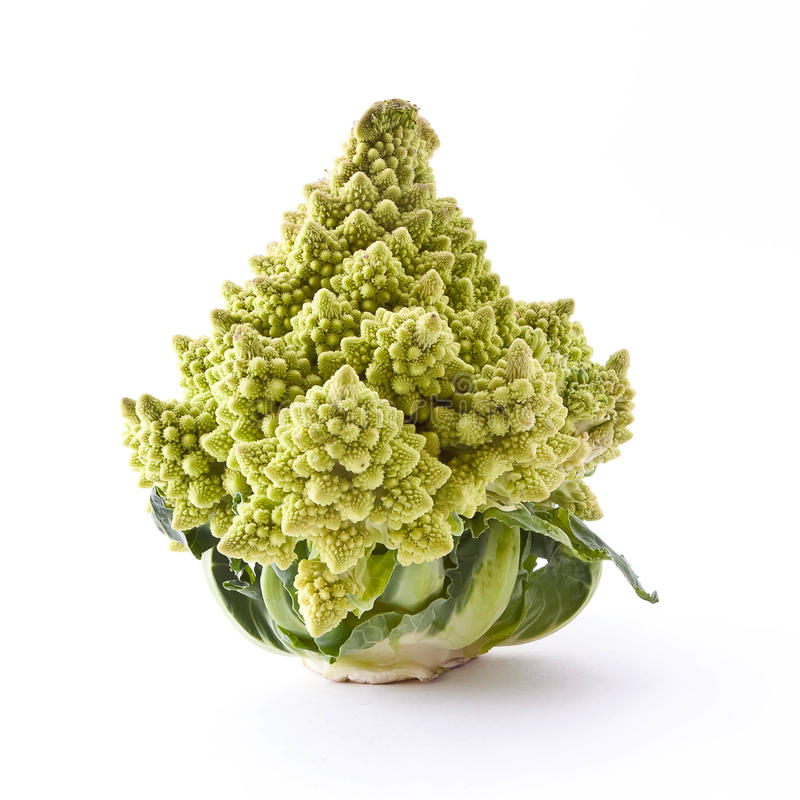 Romanesco broccoli cabbage stock image