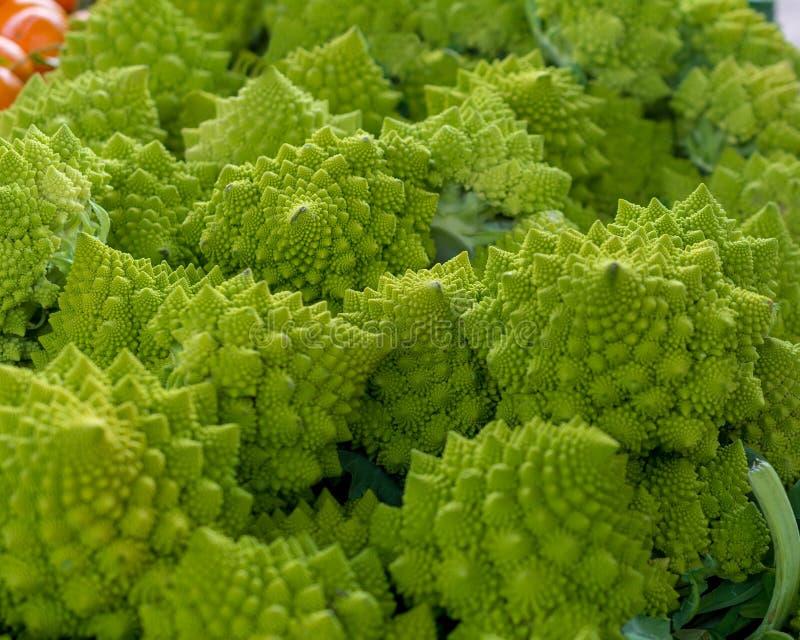 Romanesco broccoli textur eller bakgrund royaltyfria foton