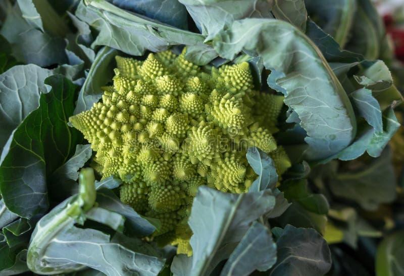 Romanesco-Brokkoli oder römischer Blumenkohl verkauften auf Landwirtmarkt lizenzfreies stockfoto