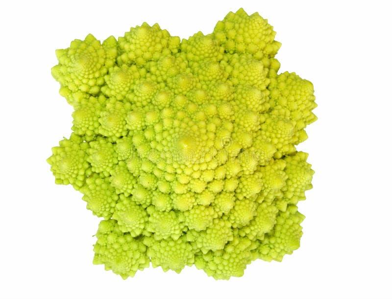 Romanesco cabbage macro isolated stock photos