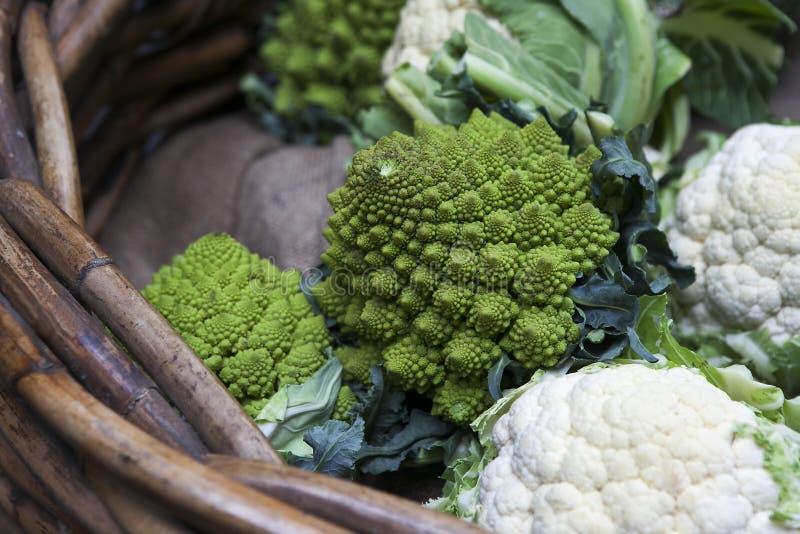 Romanescobloemkool met zijn fractal vormen en Fibonacci-sequ royalty-vrije stock foto's
