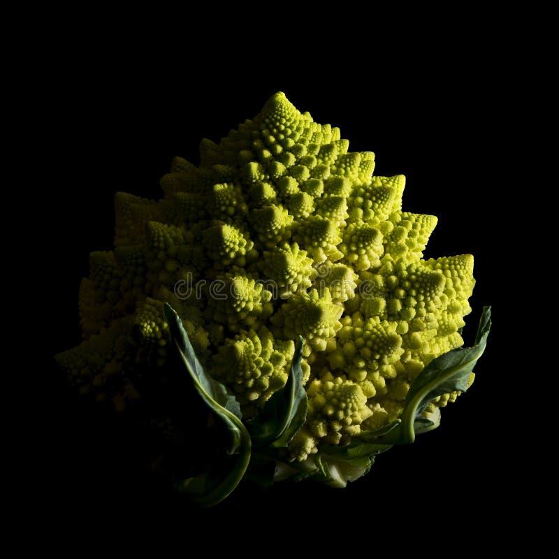 Romanescobroccoli op zwarte achtergrond royalty-vrije stock fotografie