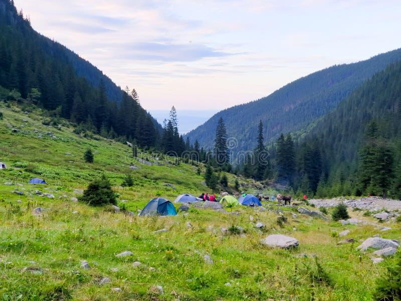 Romania, Fagaras Mountains, Sambata Chalet, perfect place for tenth. stock image
