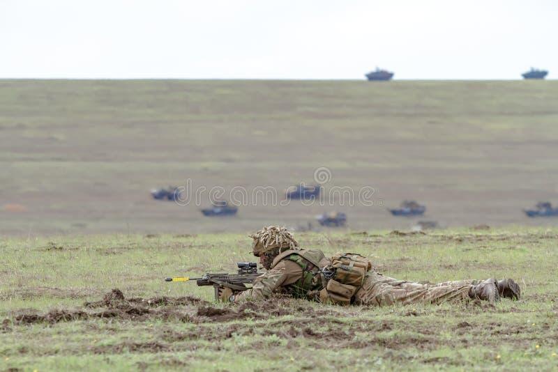 ROMANIA-NATO-ARMY-EXERCISE royaltyfria foton