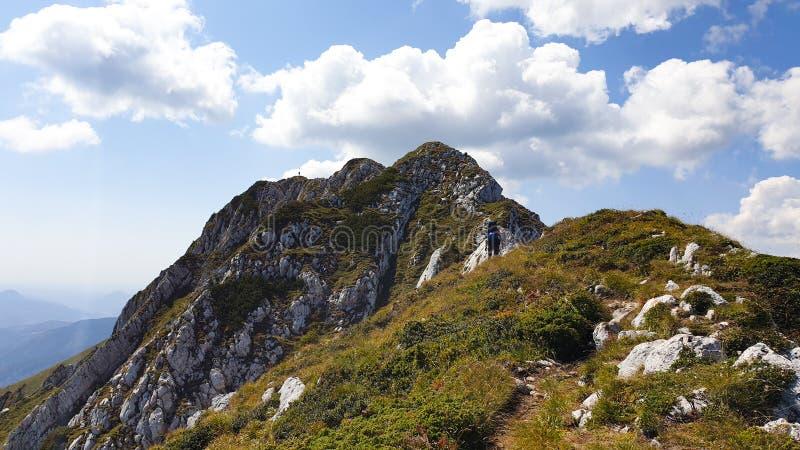 Romania, Piatra Craiului Mountains, northen ridge, Sbirii and La Om Peaks. stock photo
