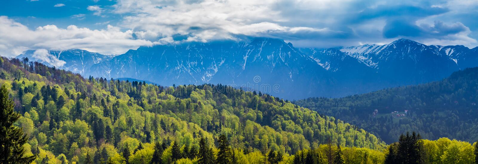 Romania, Predeal. the snowy Bucegi mountains and the green forests at their base seen from Predeal royalty free stock photo