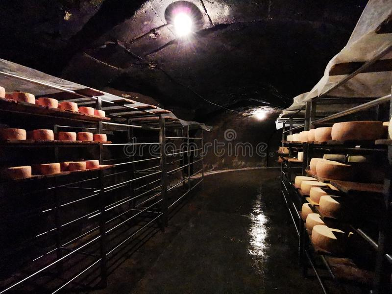Romanian cheese Nasal on metal shelves in the grotto. Nasal cheese is a specialty unique in the world due to its special taste, likened Camembert cheese, a fact stock photos
