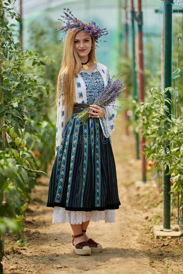 Romanian girl in costume in the hothouse. Romanian girl in traditional costume picking tomatoes in the hothouse royalty free stock images