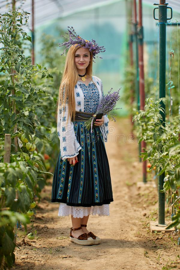 Romanian girl in costume in the hothouse. Romanian girl in traditional costume picking tomatoes in the hothouse stock photo