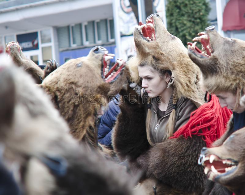 Romanian girl dressed in bear, New Years traditions. New Years traditions - groups of young people dancing in the street dressed in bear furs, Piatra Neamt stock photography