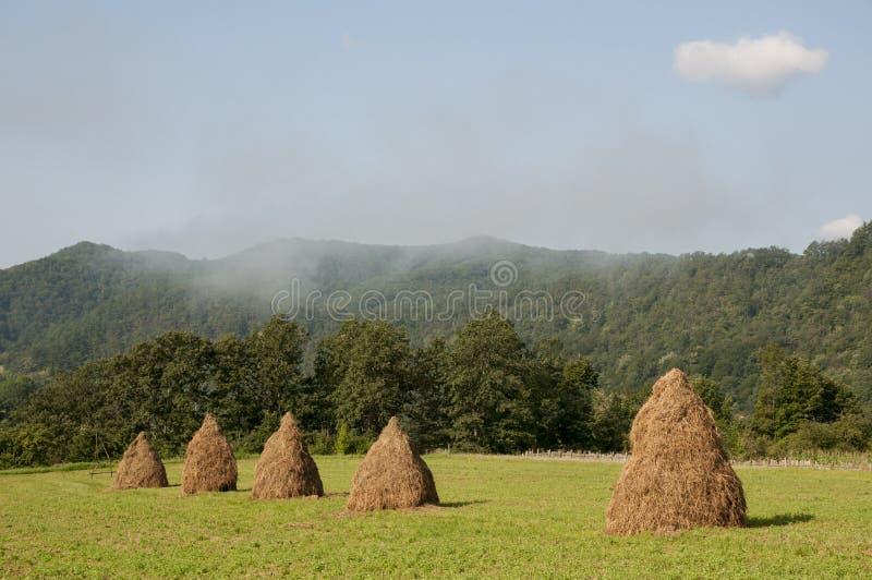 Romanian landscape stock photo