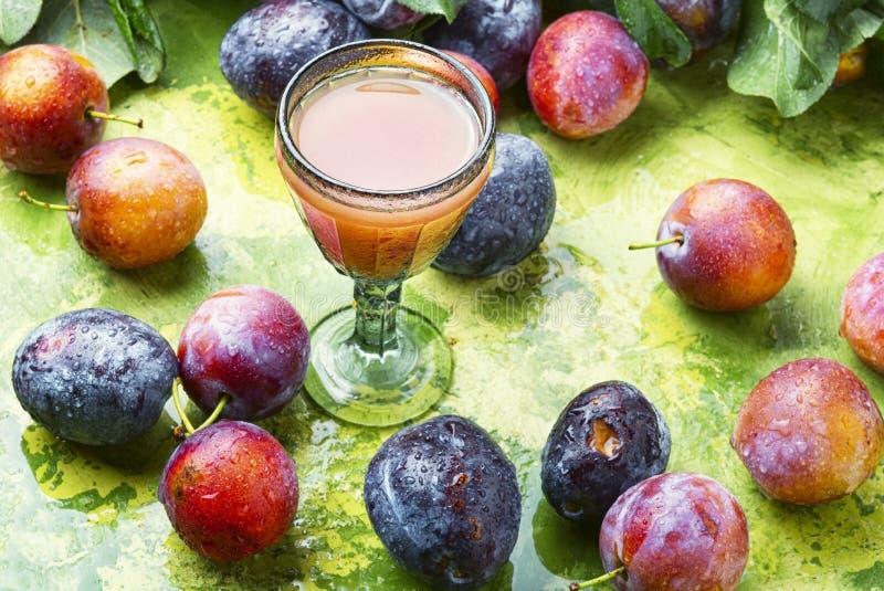 Romanian national plum liquor stock image