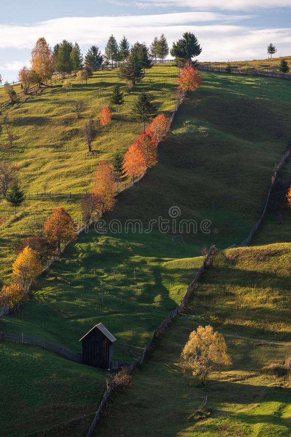 Romanian village on countryside with old wood house and pine forest stock photo