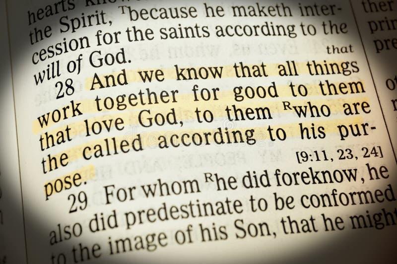 Romans 6:28 - I znamy wszystkie rzeczy pracują wpólnie na dobre one że miłość bóg obraz royalty free