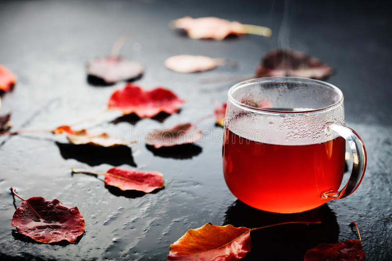 Romantic autumn cup of tea with leaves royalty free stock photo