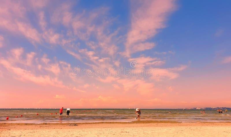 Romantic beautiful sunset afternoon at sea people  silhouette on horizon  Baltic Sea seashell on the rock  sea sky stock photos