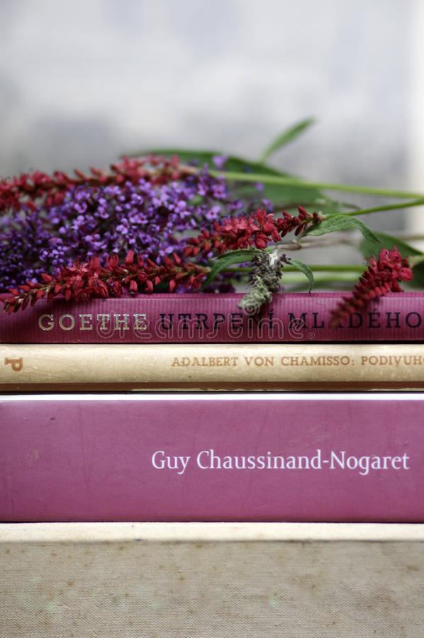 Romantic books and flowers summer reading stillife. Detail of pink, rose, purple  and beige romantic books with summer flowers stillife royalty free stock photos