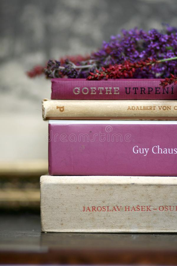 Romantic books and flowers summer reading stillife. Detail of pink, rose, purple  and beige romantic books with summer flowers stillife stock photos