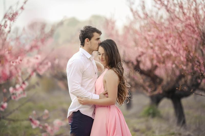 Romantic bridegroom kissing bride on forehead while standing against wall covered with pink flowers stock photography