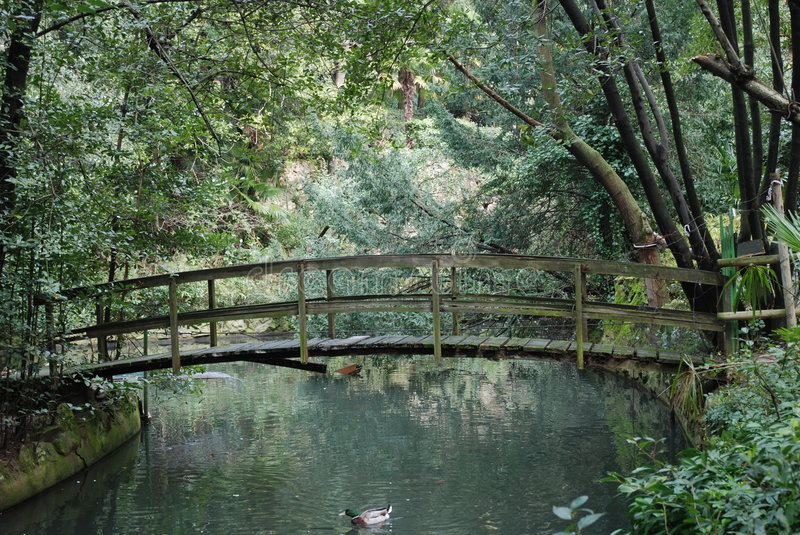 Romantic bridge over water royalty free stock images