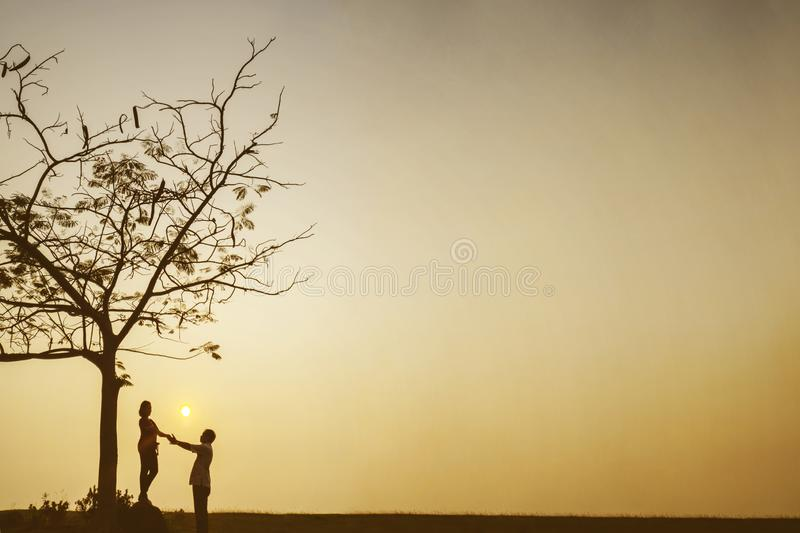 Romantic couple standing under a tree at sunset stock images