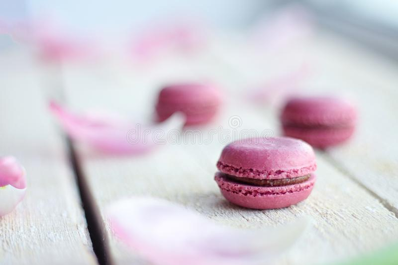 Romantic delicate composition with pink flowers and macaroon cakes. royalty free stock photos