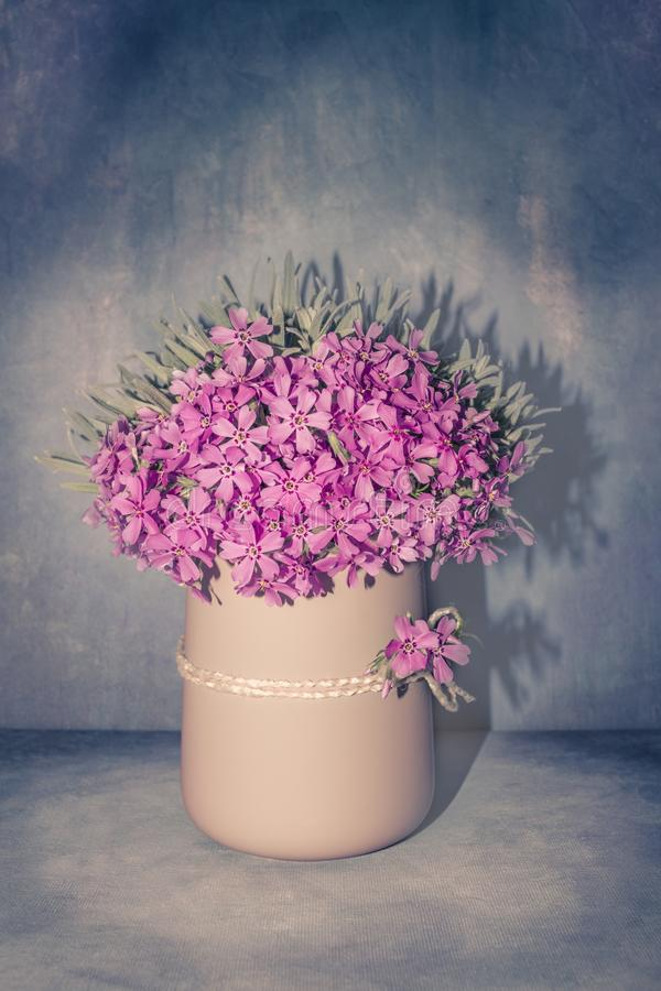 Romantic floral arrangement with fresh pink flowers close-up, spring blossom bouquet in a pastel vase on vintage blue background stock image