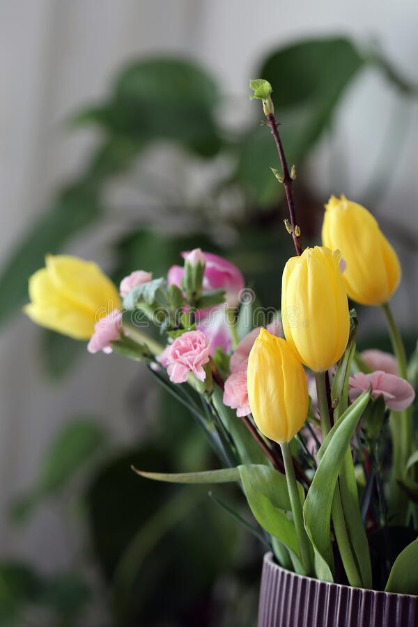 Romantic Flower Bouquet Including Bright Yellow Tulips and Light Pink Dianthus Flowers stock photo