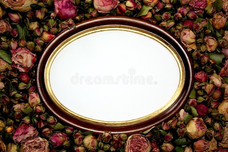 Romantic frame stock image. Image of flower, rose, frame - 8176439