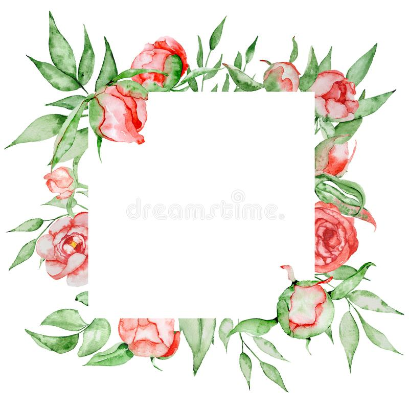 Romantic frame with flowers Card template. Watercolor peonies with green leaves on the white background. Hand drawn illustration. stock illustration