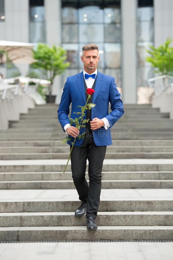 Romantic gentleman. Man mature confident macho with romantic gift. Handsome guy rose flower romantic date. Valentines royalty free stock images