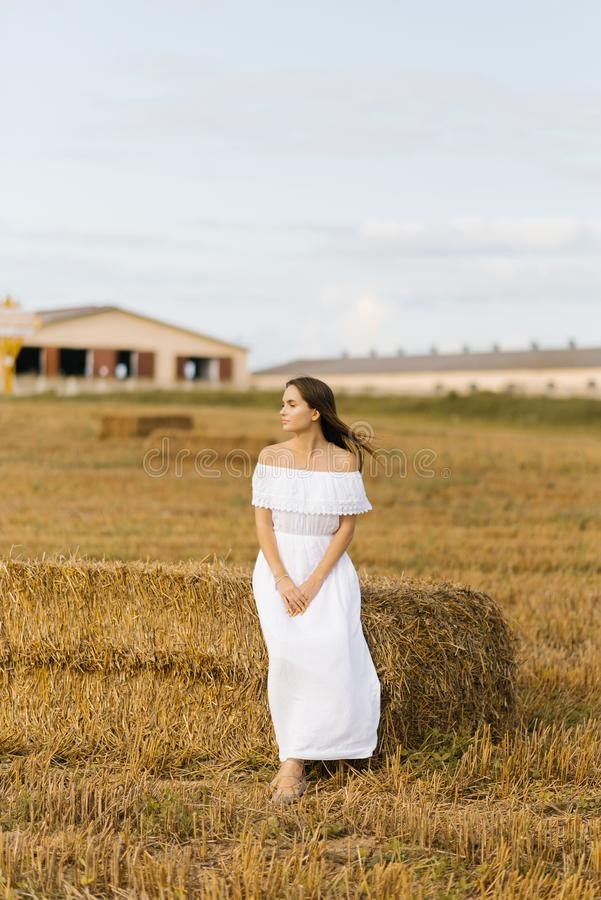 A romantic girl in a white simple dress in a mown field sits on a bale. Of straw royalty free stock photos