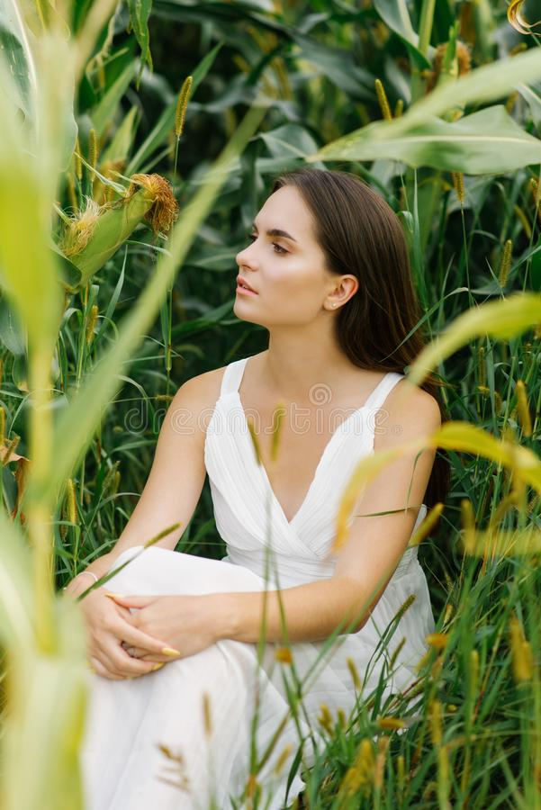 Romantic girl in a white simple dress sitting in a field of corn. Unity with nature stock photo