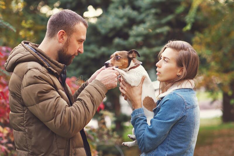Walk the dog. Romantic happy couple in love enjoying their time with pets. Loving couple having fun with dog at the walk. Concept people, animals and lifestyle stock photo