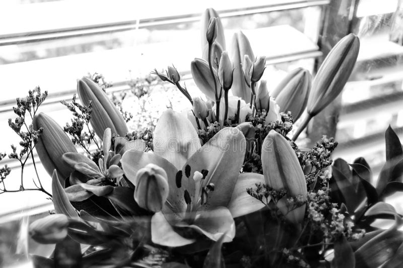 A romantic image of a bouquet of lilies in monochrome stock photos