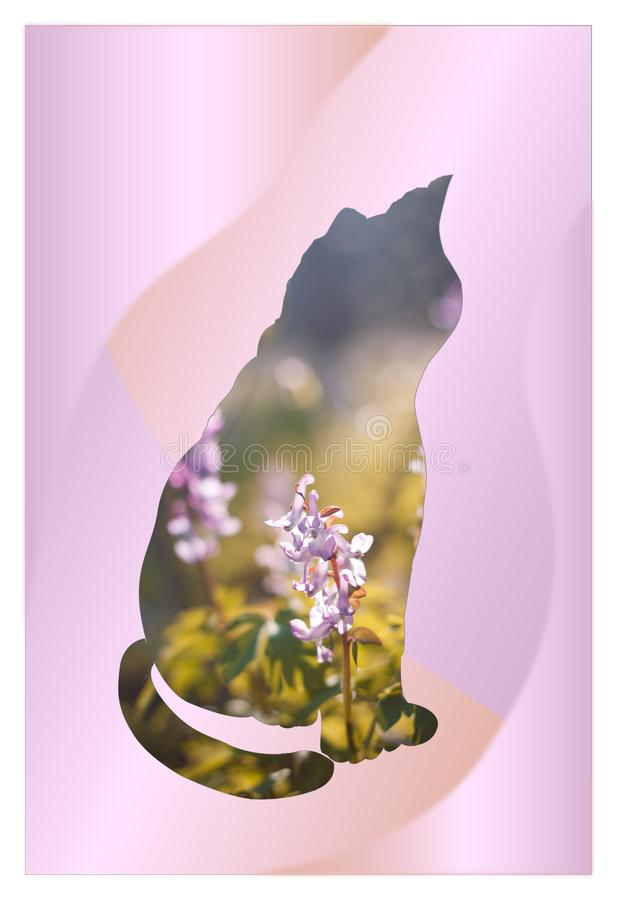 Romantic image of a sitting cat with double exposure design. Spring flowers in frame of cat silhouette royalty free illustration