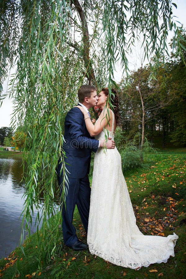 Romantic Kiss Bride And Groom On Beautiful Nature Stock Image ...