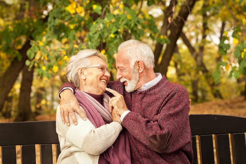 Romantic and love senior couple on a park bench royalty free stock image