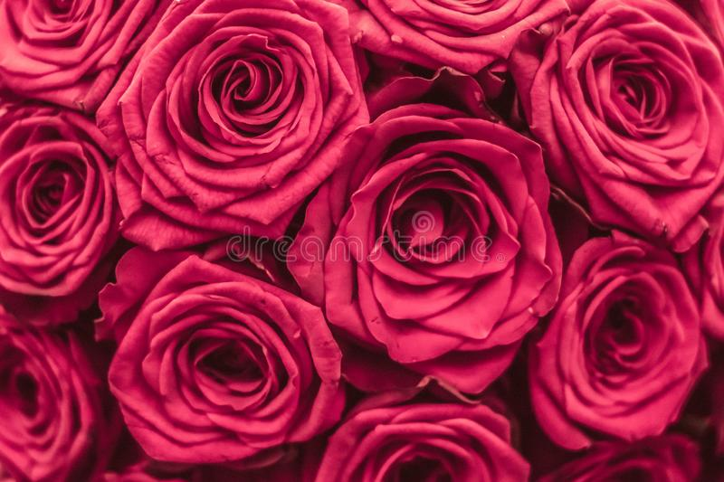 Romantic luxury bouquet of pink roses, flowers in bloom as floral holiday background royalty free stock image