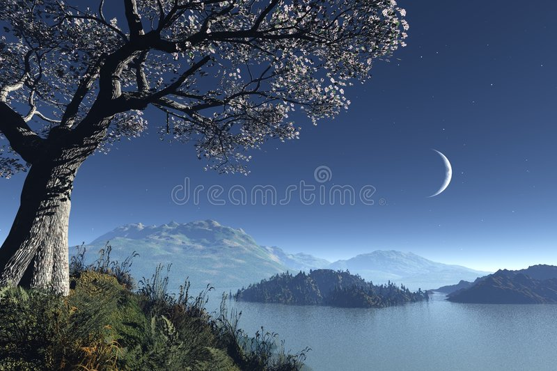 Romantic night landscape stock illustration