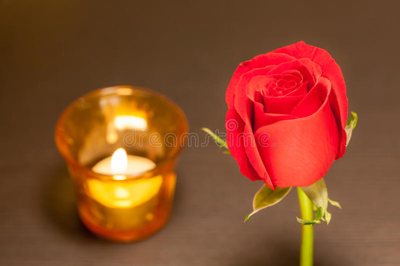 Romantic night, single beautiful red rose with blurred candlelight in background. royalty free stock photos