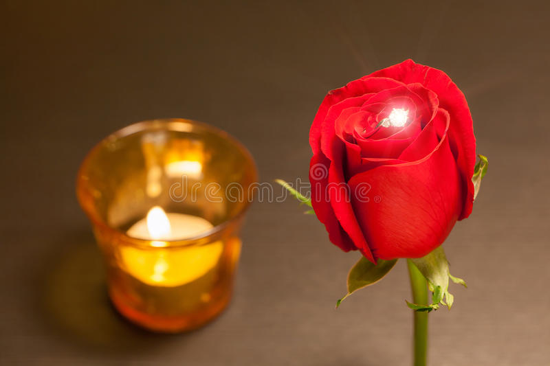Romantic night, single beautiful red rose and shiny diamond ring stock photography