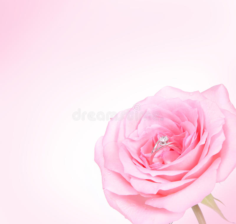 Download Romantic Pink Rose With Diamond Ring Royalty Free Stock Image - Image: 23981526