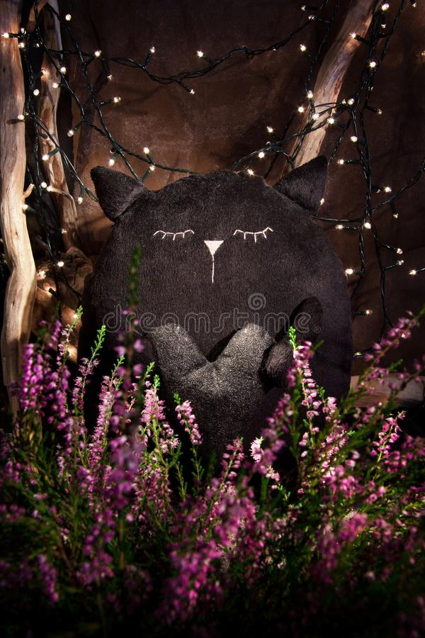 Romantic plush black cat royalty free stock images