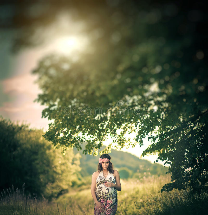 Romantic pregnant woman outside, among the trees stock image