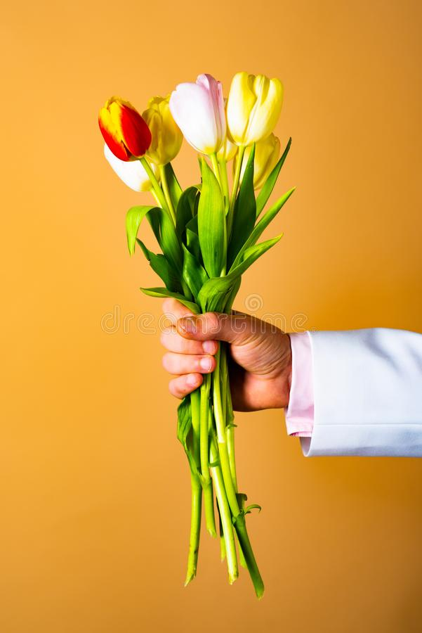 Romantic present. Hand with flower. Tulips for woman. Spring flowers. Date. royalty free stock image
