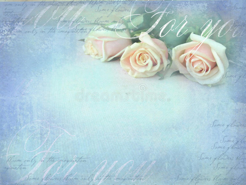 Romantic retro grunge background with roses. Sweet roses in vintage color style with free space for text stock photos