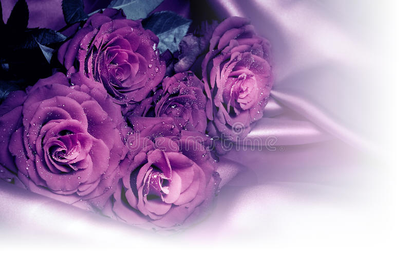 Download Romantic roses stock image. Image of love, bouquet, satin - 22346347