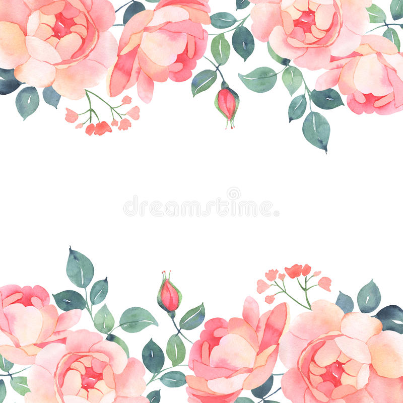 Romantic Roses Watercolor Background Decoration Stock