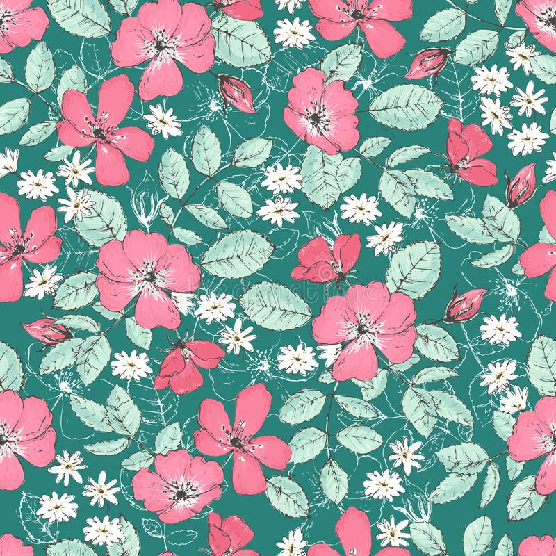 Romantic seamless patterns with wild roses, vintage style. royalty free illustration